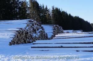 деревянные дома, лес, заготовка