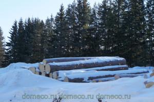 деревянные дома, производство, заготовка